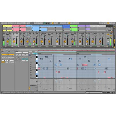 Live 11 Standard EDU - Education/ Schulversion (Software Key)